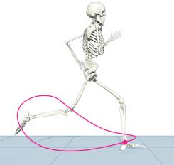 ankle-path-sagittal