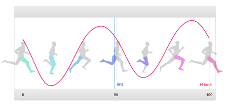 running gait phases diagram wiring schematic diagram3d running gait analysis fredrik lmqvist blog proper running gait 3d running gait analysis